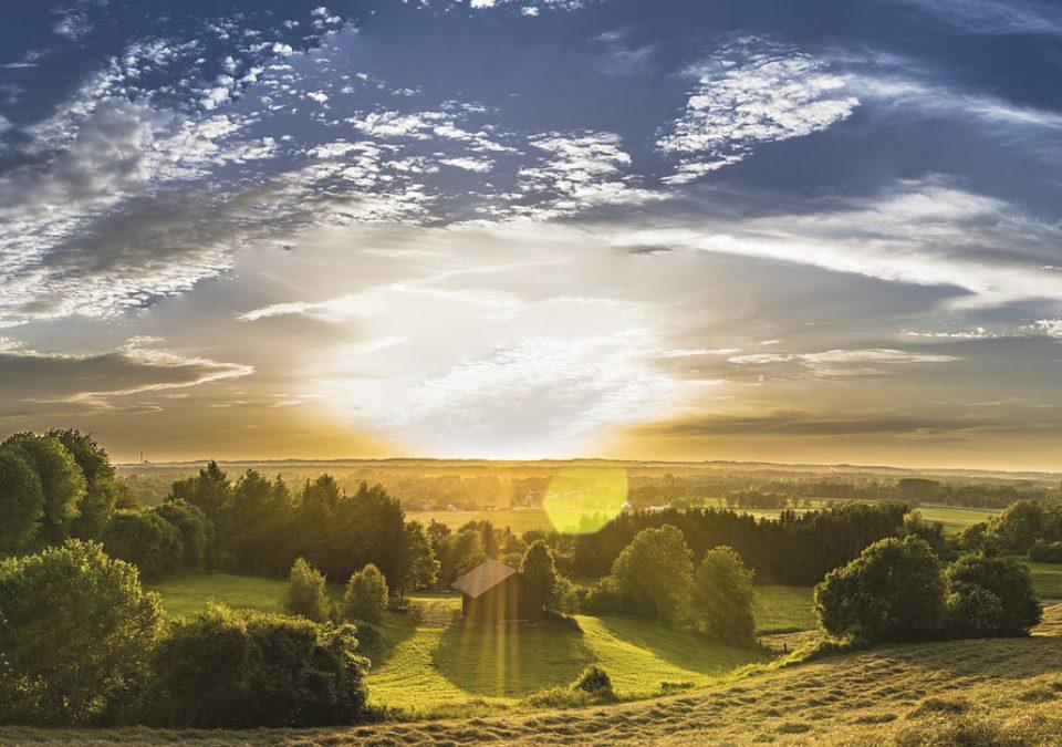 Los sistemas contribuyen a la protección del medio ambiente